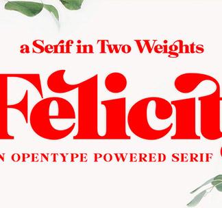 Felicity Font Family