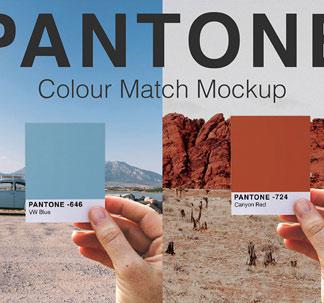 Pantone Colour Swatch Mockups