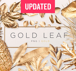 Gold Leaves PNG Graphics Pack