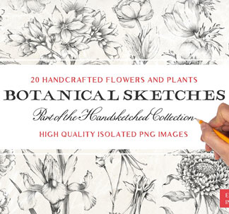 20 Botanical Illustrations
