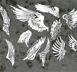 Wings Vectors (11 vectors)