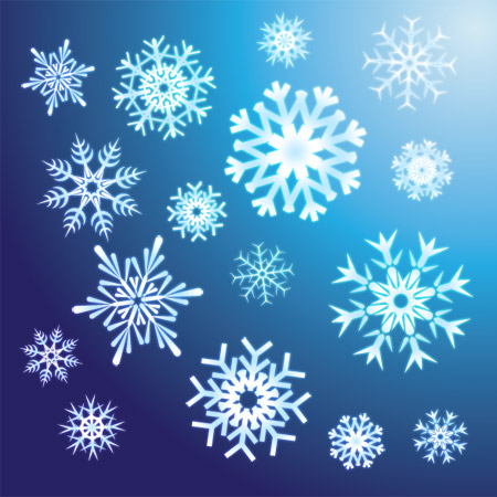 Image result for Real Snow Flakes