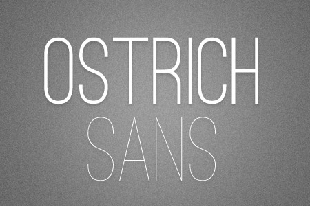 Download the Ostrich Sans font