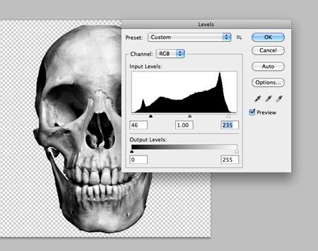 Desaturate gambar tengkorak dan menyesuaikan tingkat untuk bump up