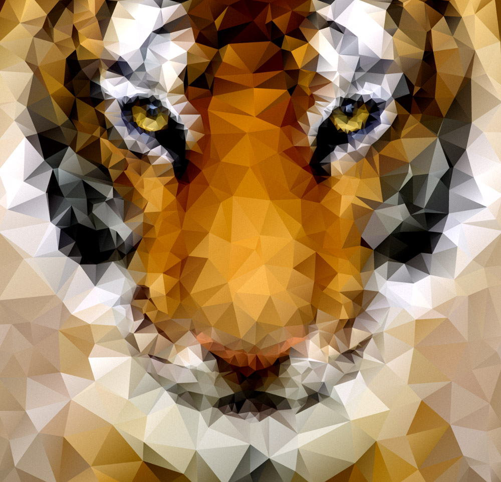 Low Poly Tiger Illustration