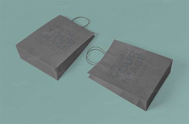 Mockup of Two Paper Bags