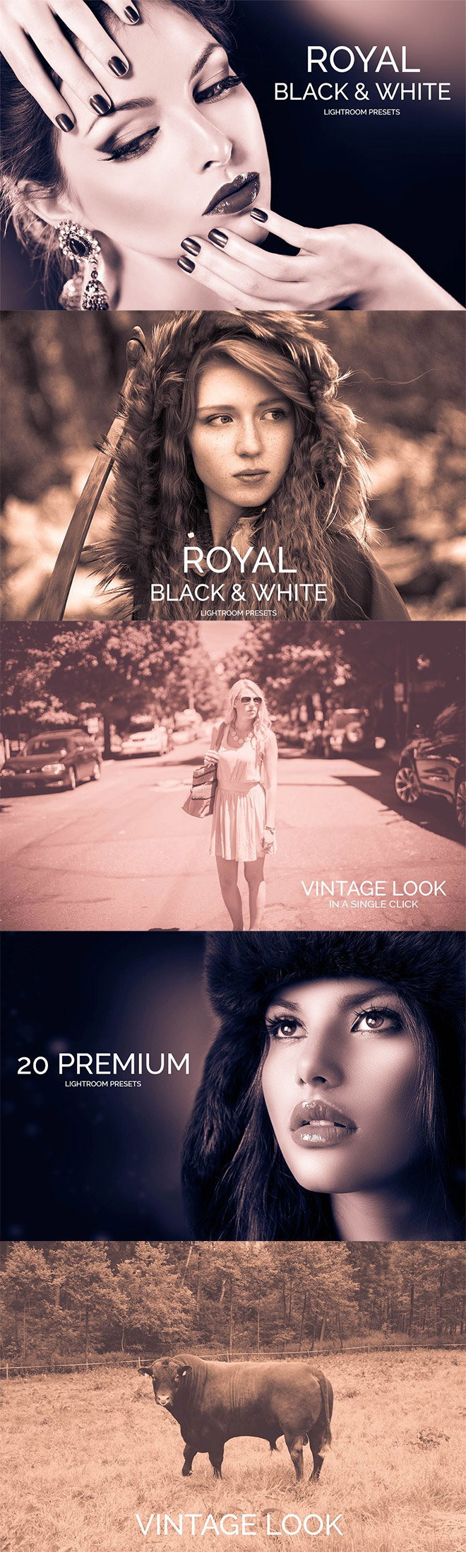 Royal Black & White Lightroom Presets