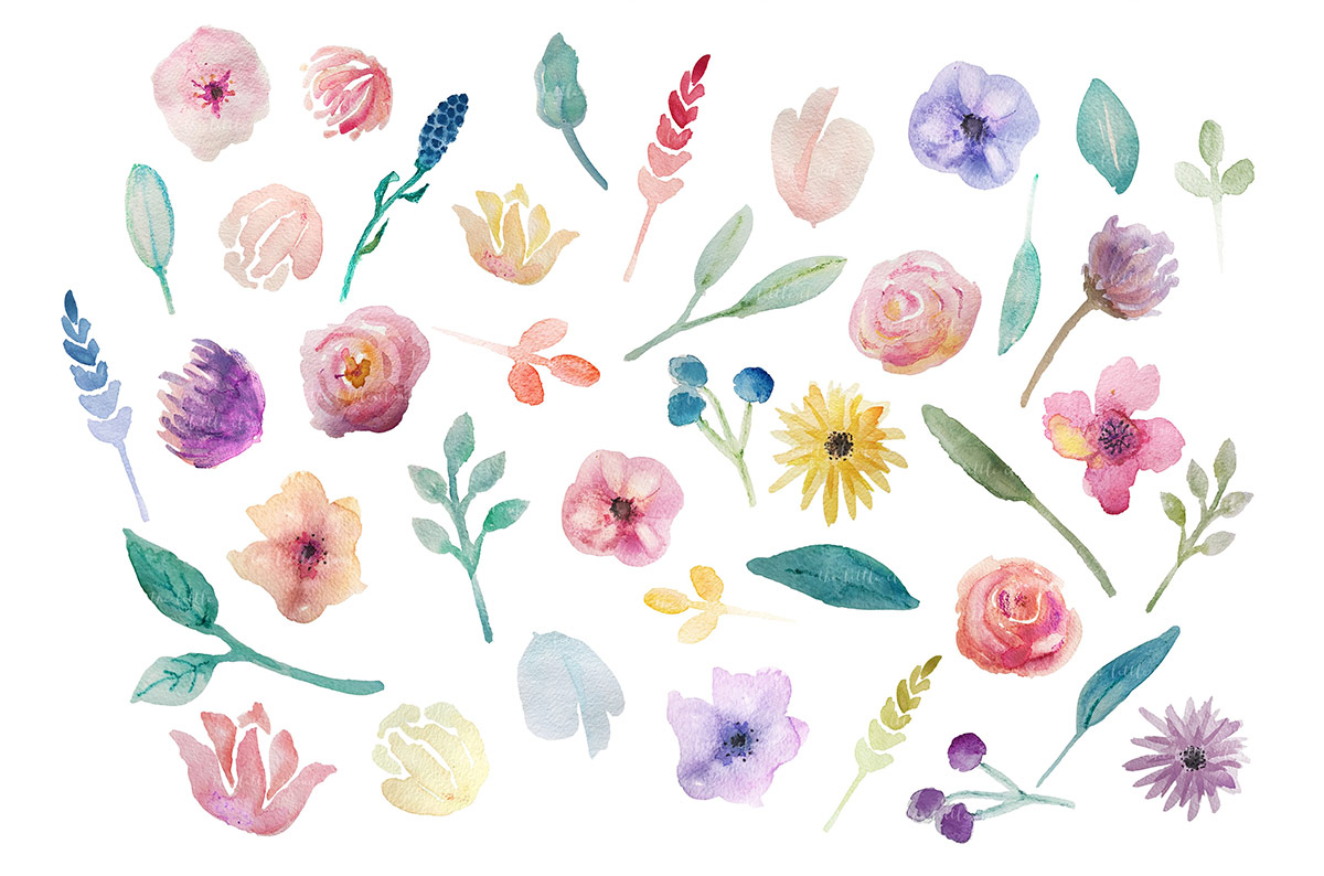 go floral watercolor clip art set for access all areas members