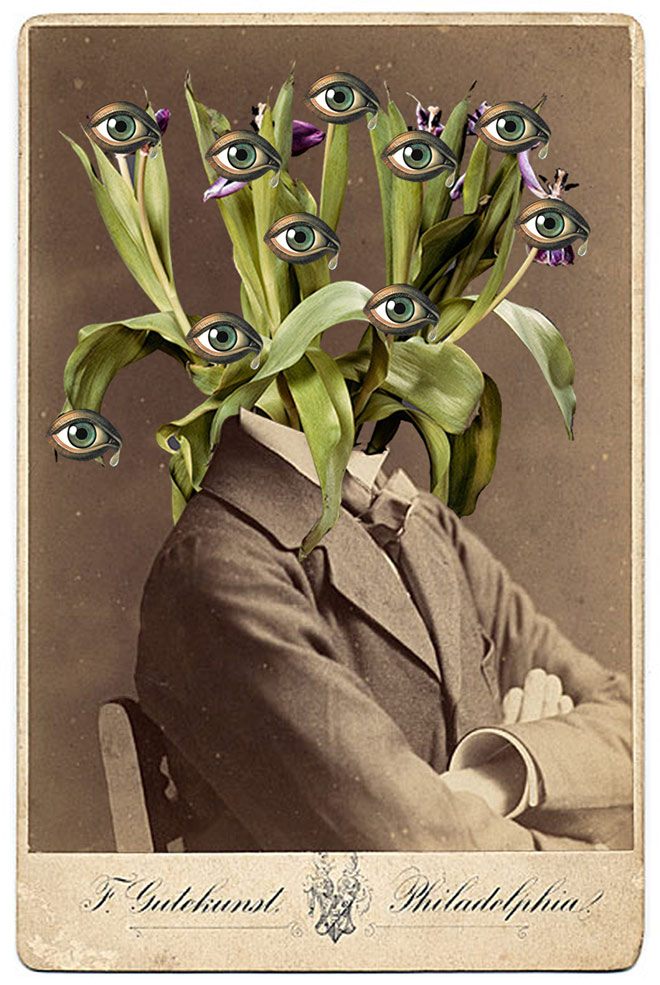 Collage by W. Strempler