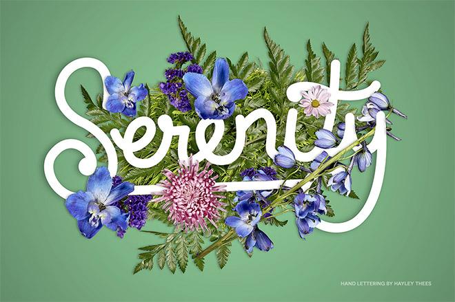 FlowerType by Ian Barnard
