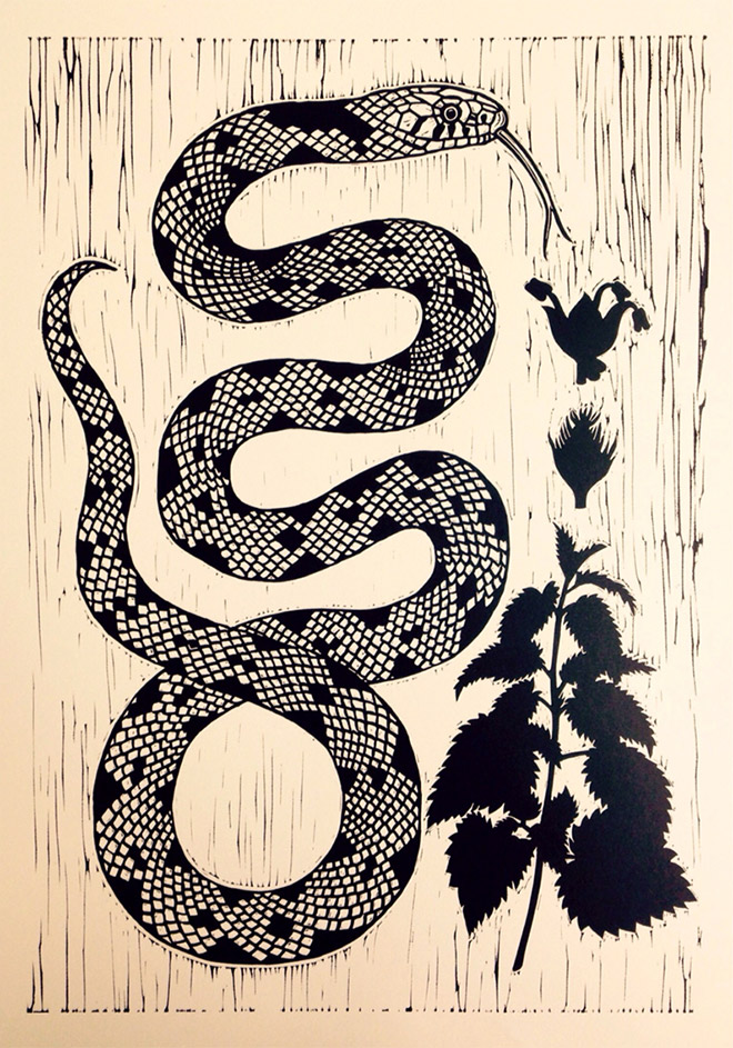 Grass Snake and Nettle by Ella Ginn