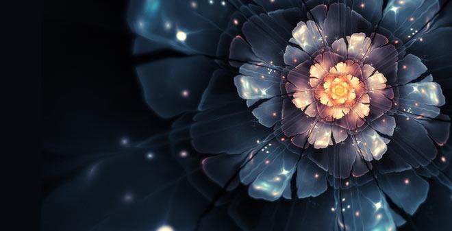 2D Apophysis Flowers by Chiara Biancheri
