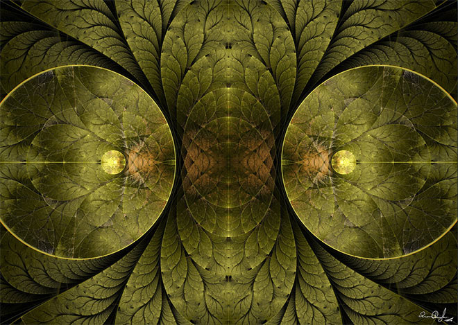 Iterated Flame Fractals by Liam Donoghue