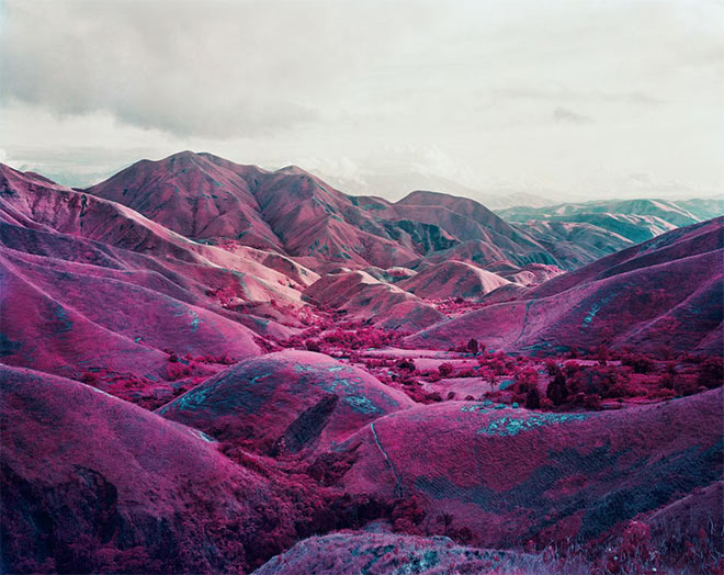 Nowhere to run by Richard Mosse
