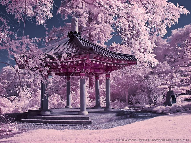 Infrared Korean Pavilion by La Vita a Bella
