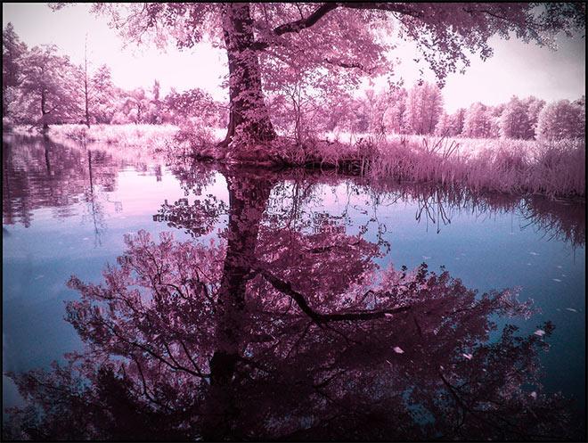 Summer in September by MichiLauke