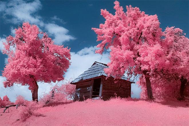 Abandoned House by Mugurelm