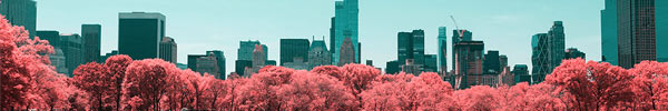 66 Breathtaking Examples of Infrared Photography with Surreal Colours