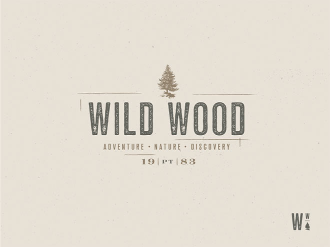 Wild Wood by Sara Davila Evangelista
