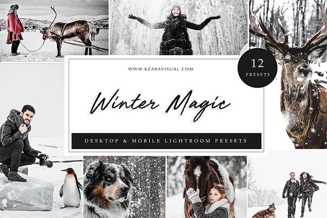 Lightroom Presets - Winter Magic