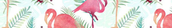 Tropical Flamingo Graphics & Patterns for Premium Members
