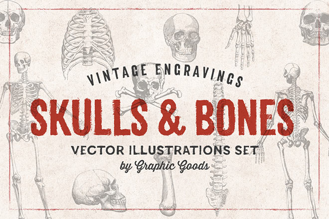 Skulls & Bones Illustrations