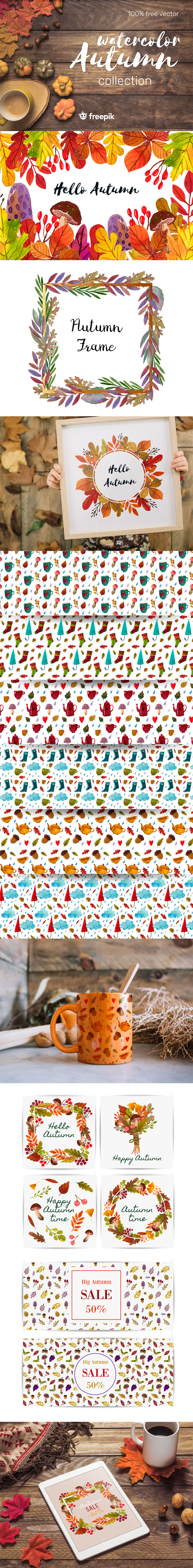 Autumn Watercolour Graphics and Patterns for Premium Members
