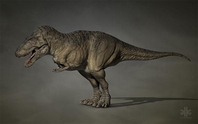 Tyrannosaurus Rex by Dominic Piche