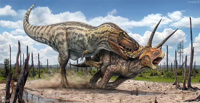 T.Rex vs Triceratops by Vlad Konstantinov