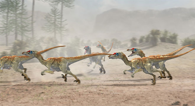 Velociraptor Pack by Jose Antonio Penas