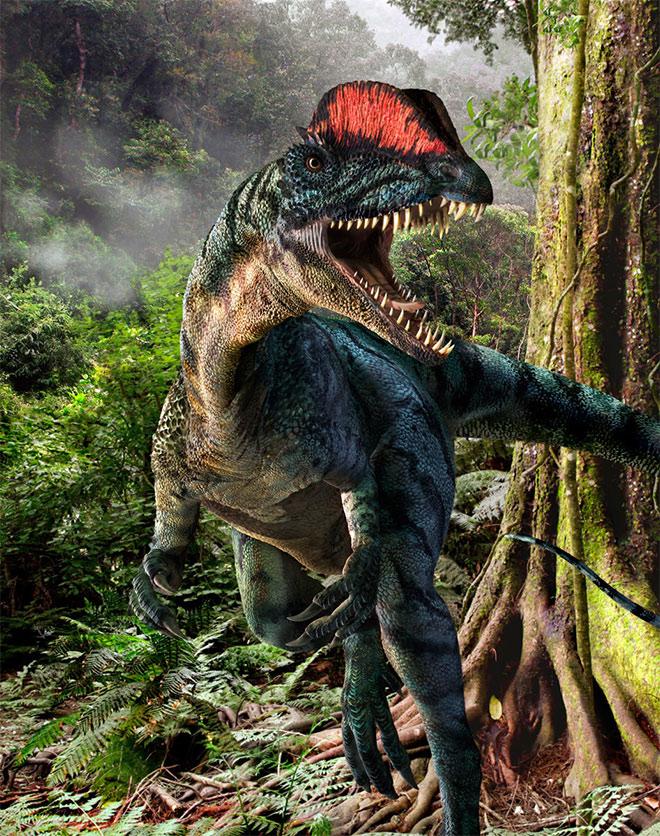 Dilophosaurus by Sorin Bulucianu