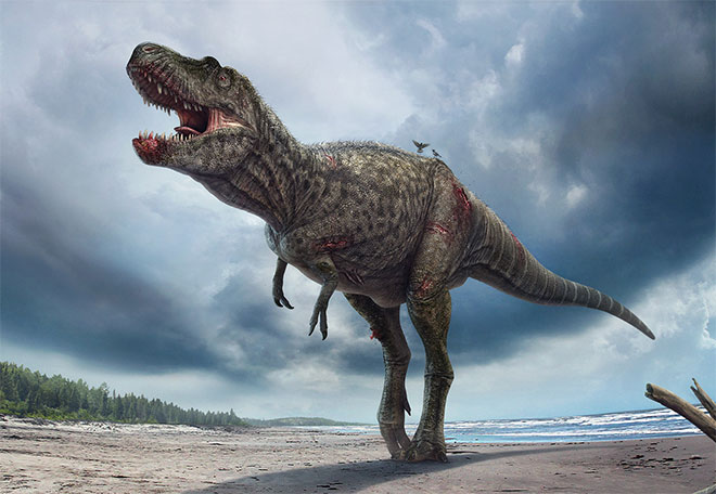 Gorgosaurus by Vlad Konstantinov
