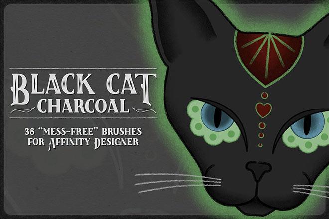 Black cat charcoal brush ($ 17)